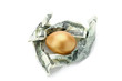 A golden egg in dollars isolated on white background
