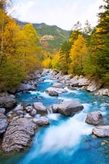 Rio Ara river Bujaruelo in Valle de Ordesa valley Pyrenees Huesc