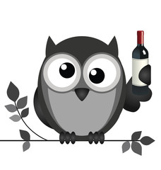 Drunken owl sat on a branch