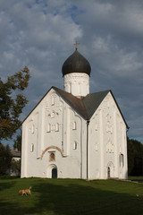 Norgorod