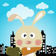 Rabbit in the city