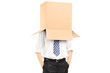 Man standing with a cardboard box on his head