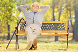 Relaxed senior gentleman sitting on a bench in a park