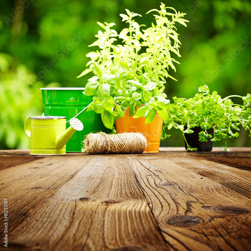 canvas print picture Outdoor gardening tools  on old wood table