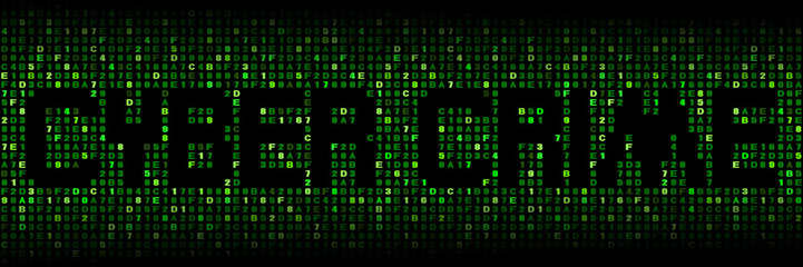 Cyber crime text on hex code illustration