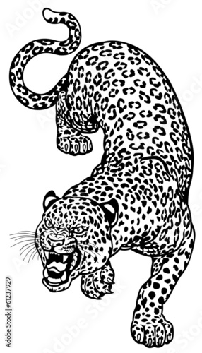 leopard  black white tattoo