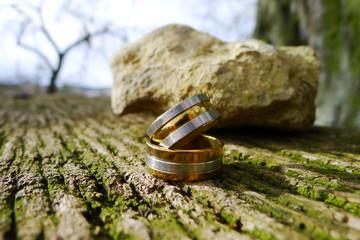 Ringe & Natur
