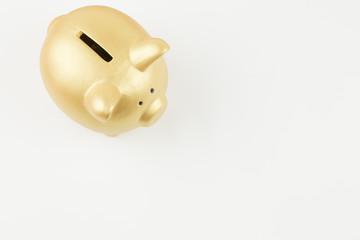 金豚の貯金箱