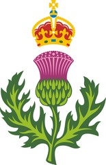 Scottish thistle .Symbol of Scotland