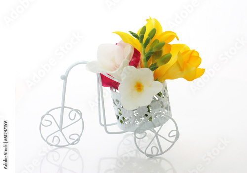 Beautiful freesia flowers  in cute vintage bike