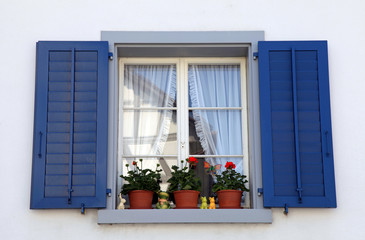 window with blue shutters and flower pots, Switzerland.