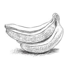 sketch banana