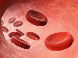 Bloodstream illustration