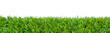 canvas print picture - Close up of golf green grass