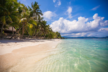 Tropical perfect beach with green palms,white sand and turquoise