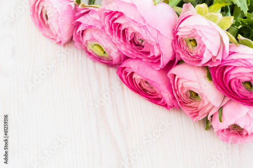 Pink ranunculus on a wooden surface