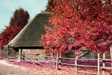 antique wooden village in Europe in the infrared spectrum