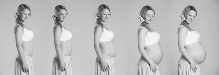 Pregnancy stages collage