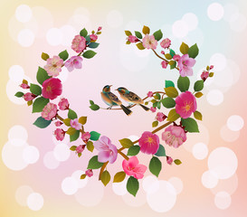 Love birds, sakura, spring, Valentine's Day.