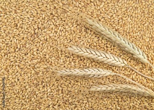 Aluminium Granen Wheat background