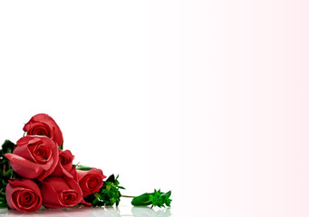 VALENTINE`S DAY ROSES 1