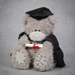 ours en peluche étudiant