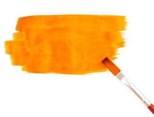 Orange paint strokes isolated on white, vector illustration