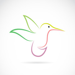 Vector image of an hummingbird design