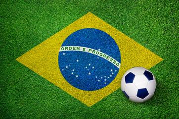 Fußball WM Weltmeisterschaft 2014 Brasilien - Fahne auf Rasen