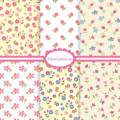 Set of flower seamless patterns