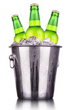 Beer bottles in ice bucket isolated