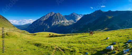 Pyrenees mountains