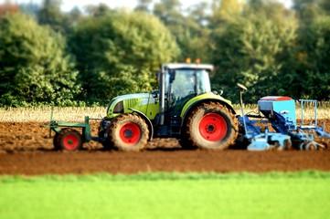 Getreideanbau, Herbstbestellung