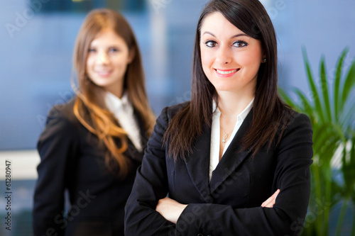 Couple of smiling businesswoman