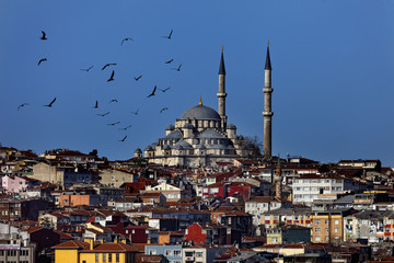 The Suleymaniye mosque in the center of Istanbul city, Turkey