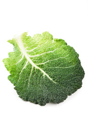 Cabbage leaves isolated on white background