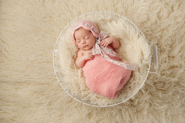 Newborn Baby Girl in Basket Wearing a Pink Bonnet