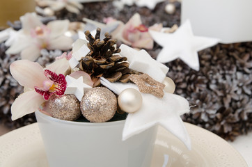 Christmas decoration with orchids, cones and balls