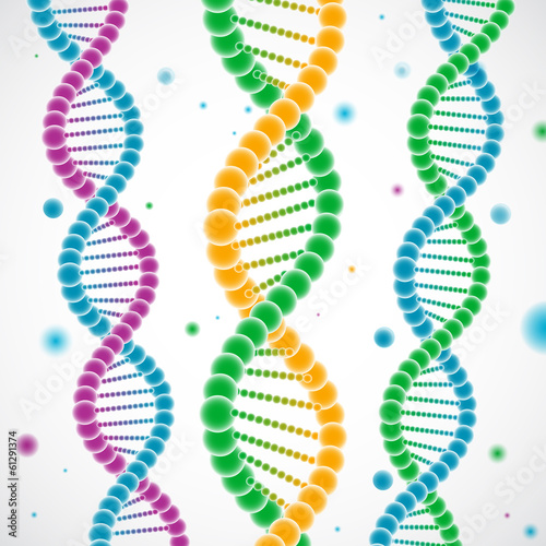 Colorful DNA dtrands