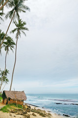 sea beach with palm trees and  hut