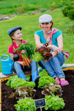 Gardening, family working in vegetable garden