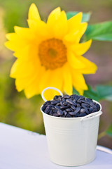 Sunflower seeds in bucket and sunflower