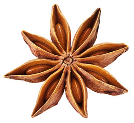 Anise star isolated on white background.