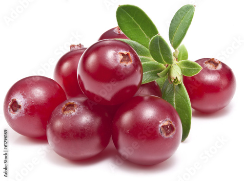 Cranberries with leaves.