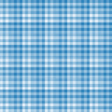 Blue gingham pattern background.