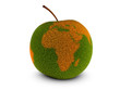 Globalisierung des Essens
