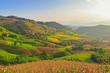 Terraced Paddy Field in Mae-Jam Village , Chaingmai Province , T