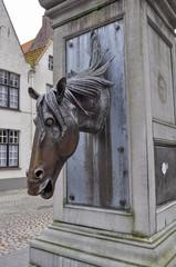 Fontana cavallo