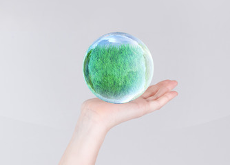 grass in glass bubble