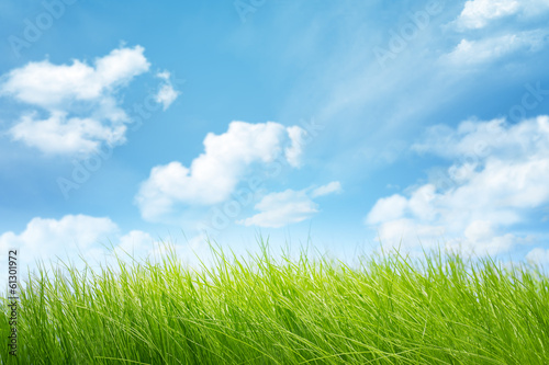 Poster Landschappen Natural backgrounds